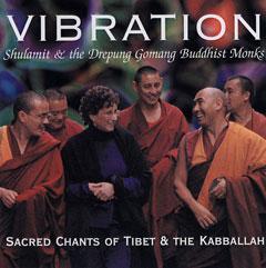 cd_vibration